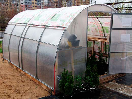 teplica Greenhouse